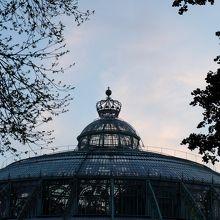 一年に一度!ガラスの宮殿の温室一般公開