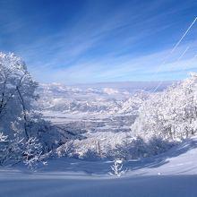 一番多く行っているスキー場