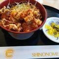 写真:展望レストラン SKY GARDEN