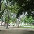 大阪のど真ん中でバーベキューできる公園です!