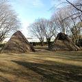 写真:炉畑遺跡 (炉畑遺跡公園)