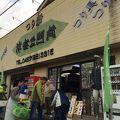 写真:茅ヶ崎漁港