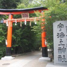 宮司さん自ら書いて下さる御朱印とうさぎの神社