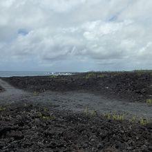 【クチコミ初登場】2015年サマーバケーション・ハワイ島 ハワイ島最東端の地、パワースポットのクムカヒ岬に行きました