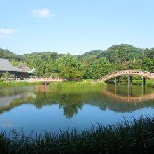 浄土庭園を入れた遠景が綺麗
