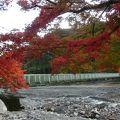 写真:やまびこ橋 (メロディ橋)