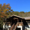写真:森のレストラン アオゲラ