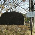 写真:どんぐりころころの碑