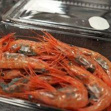 安くておいしい海鮮が食べれます