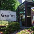写真:Green Cress