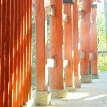 山の中を歩く千本鳥居と階段の道。