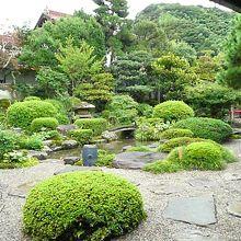 【津和野】沙羅の木松韻亭、お庭を見ながらのランチ!