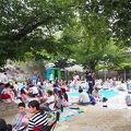 写真:挙母城址(桜城)/桜城址公園