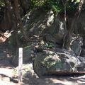 写真:城山貝塚