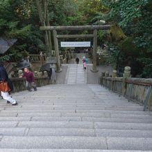 この石段を上がって御本宮に着きました。