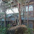 写真:旧亀井邸