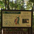 写真:岡本静嘉堂緑地