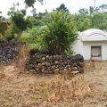写真:安里屋クヤマの墓