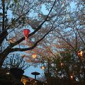 写真:山麓苑