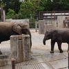 みんなに行ってみてほしい動物園!