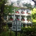写真:日比谷松本楼