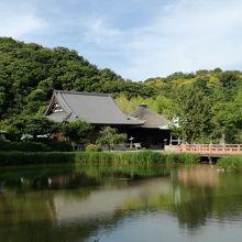 池、寺院建築、緑と景観抜群