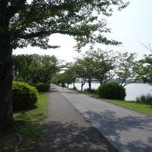 湖畔はとても整備されています