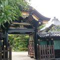 写真:大願寺山門 (旧万寿院殿霊屋門)