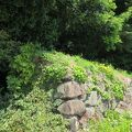 写真:浦戸城跡