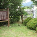 写真:武田信義館跡