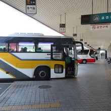 釜山総合バスターミナル クチコ...