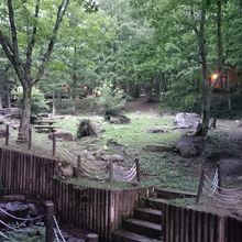 森林浴や遊びが楽しめるキャンプ場