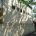 写真:堀口金魚養魚場