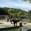 愛媛県の、のんびりした自然溢れる動物園
