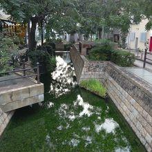橋の上からの堀の水面