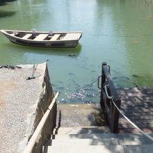 お堀に鯛が沢山いるのが見えました。左下の竹管でエサやりです。