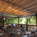 写真:阿里山cafe