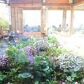 写真:チャマシヌントゥル (茶を飲む庭)