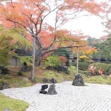 枯山水の庭園と紅葉