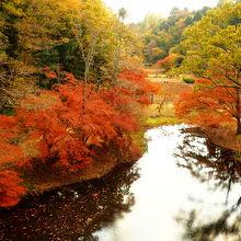 秋は紅葉が素晴らしいです