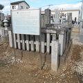 写真:官軍兵士の墓
