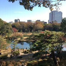 江戸時代の大名庭園 六義園