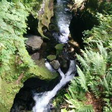 高千穂峡の甌穴です。