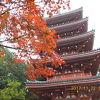 竹林寺 「よさこい節」の原点?