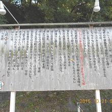 愛媛県川之江市 「純信堂」「純信」が「お馬」に宛てた手紙