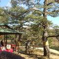 写真:六義園 吹上茶屋