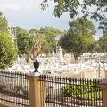 写真:コロン墓地