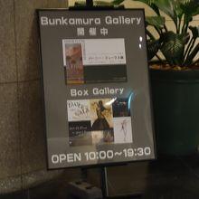 バーニー・フュークス展を鑑賞しました