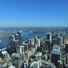 上からシドニー