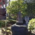 写真:戸田茂睡墓